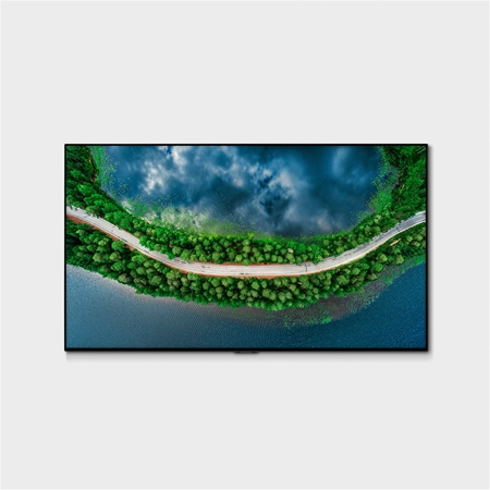 LG OLED65GX 4K OLED TV